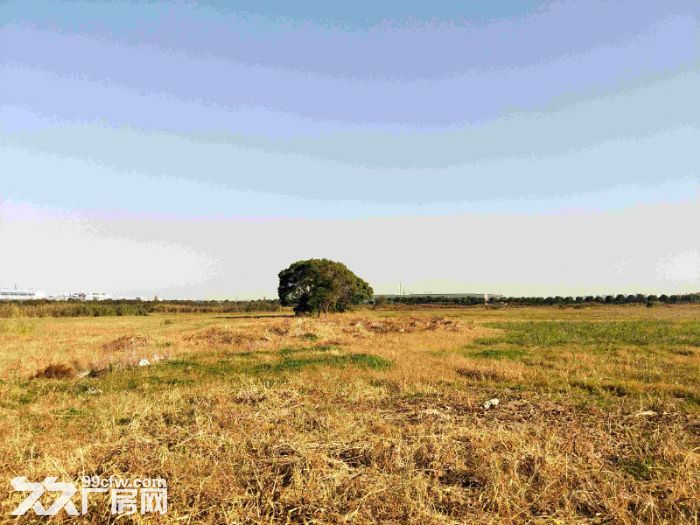 Land sale and land investment in Suzhou苏州土地出售、土地招商